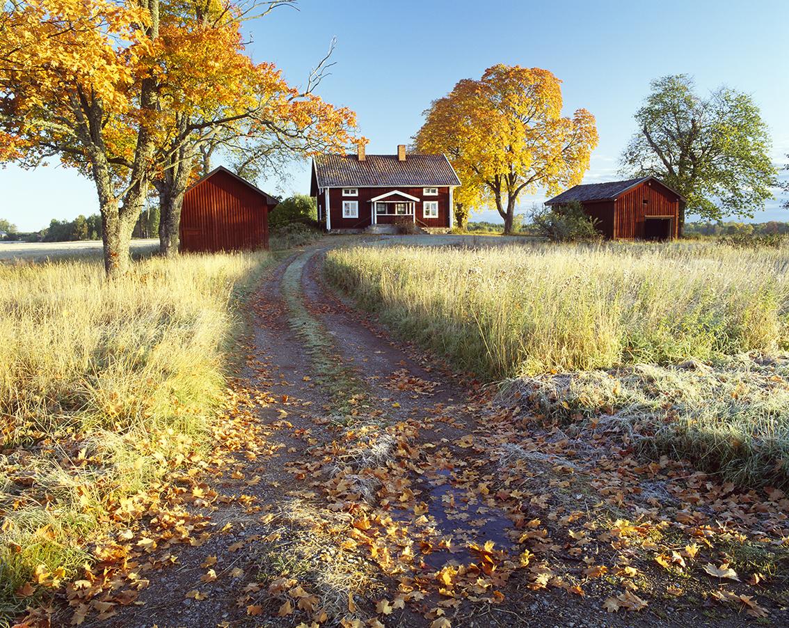 Om att köpa fritidshus på hösten